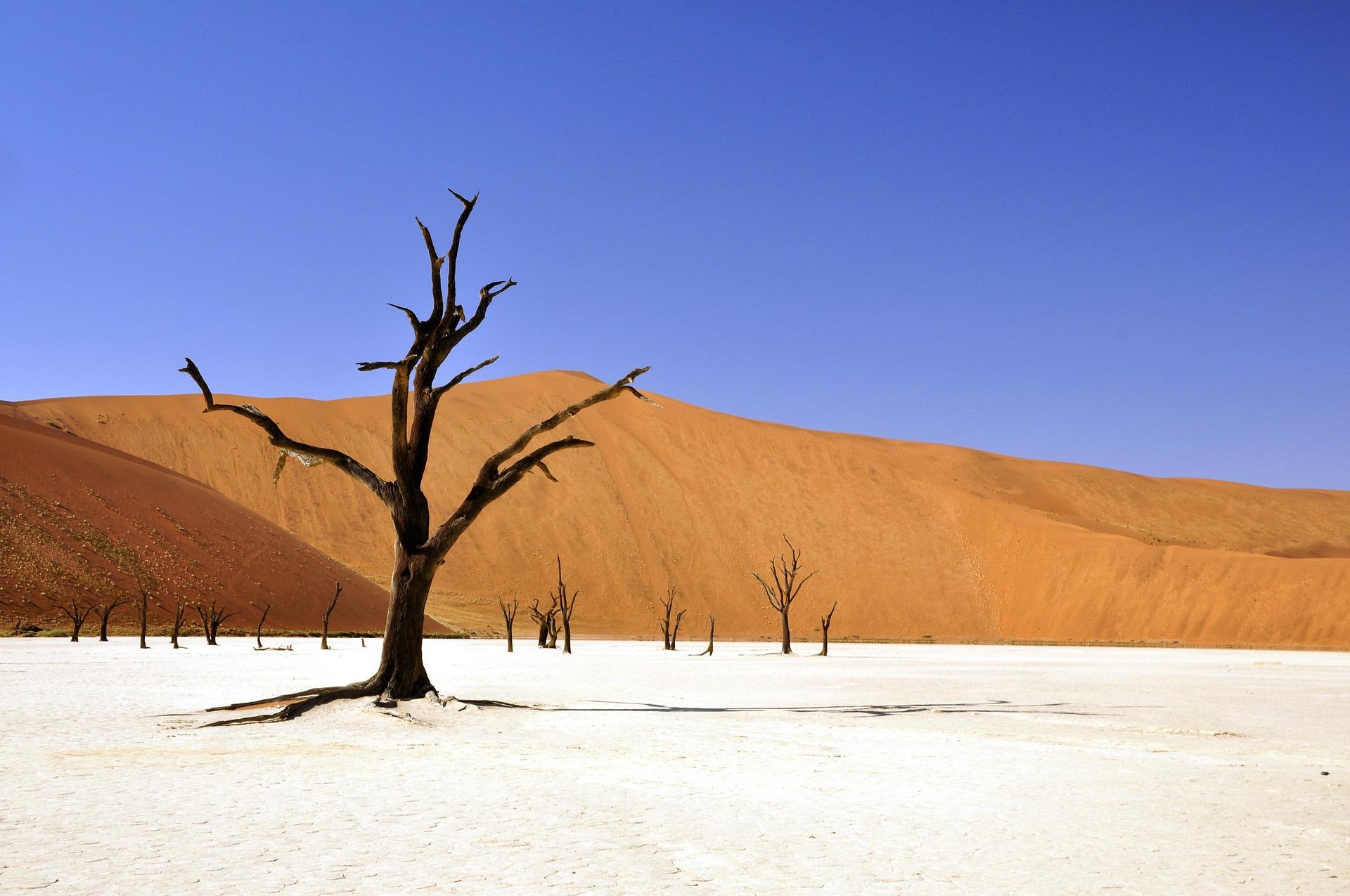 Voyage Unique Namibië Sossusvlei 2